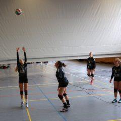 Schmalkalder VV (Damen I) : VV Werratal Bad Salzungen