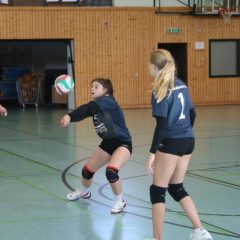 Schmalkalder VV (Damen) : SV Medizin Bad Liebenstein (Damen)